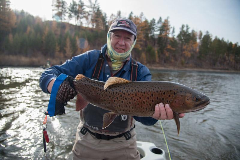 Portfolios archive nomadic journeys for Trout fishing in ohio
